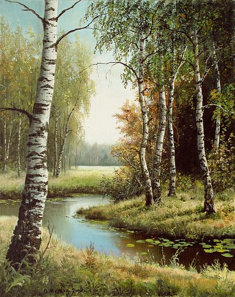 фото пейзажи березы