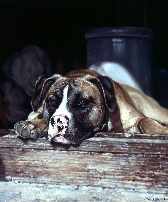 Собачки от художницы Michele Amatrula. (580x698, 118Kb)
