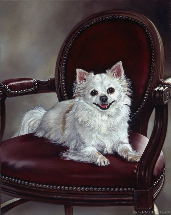 Собачки от художницы Michele Amatrula. (555x699, 101Kb)