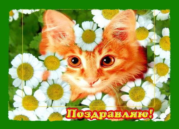 http://img1.liveinternet.ru/images/attach/c/1/48/703/48703358_1252942502_05a0958c2093.jpg