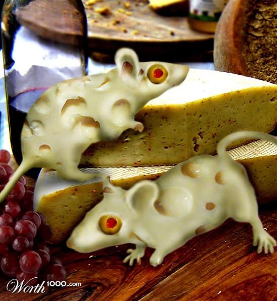 Сыр смешные картинки, поздравляю
