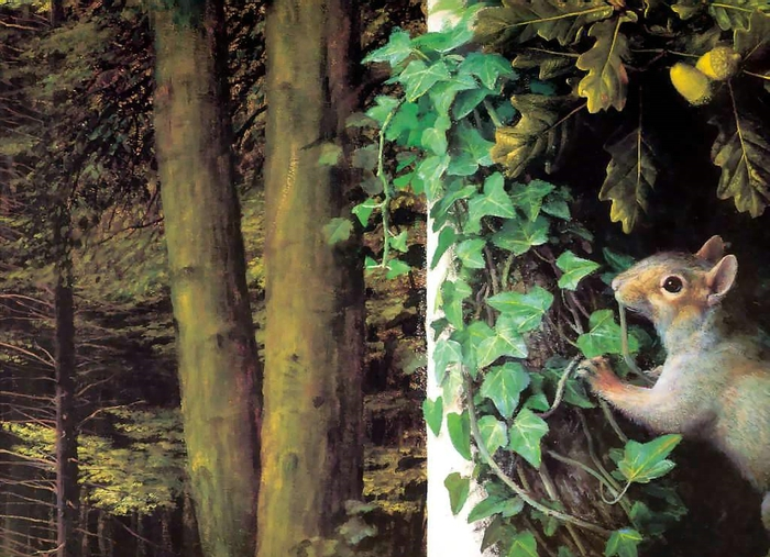 an artists garden csg005, Автор: Booth, Raymond (Рэймонд Бут)