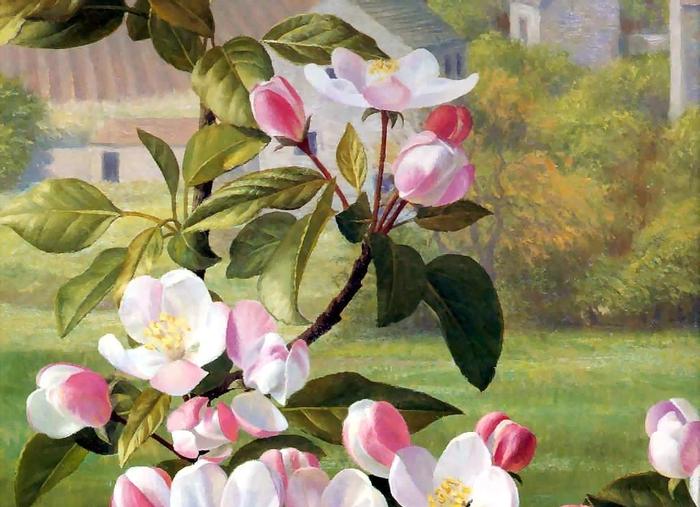 Рэймонд Бут: an artists garden csg013