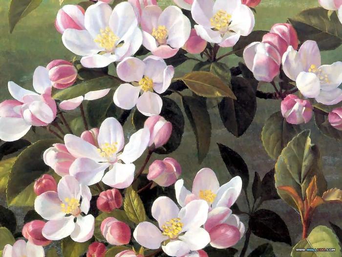 Рэймонд Бут: an artists garden csg012