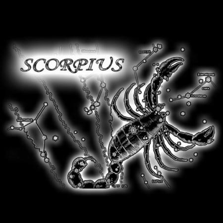 если родился под знаком скорпион