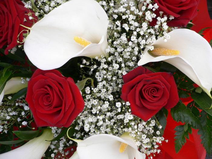 Открытка, цветы для прекрасной дамы картинки