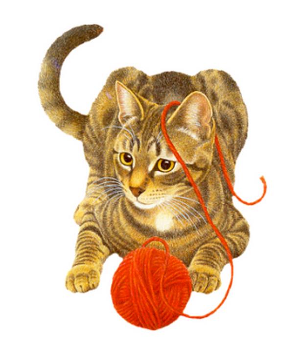 Анимационные картинки о котах