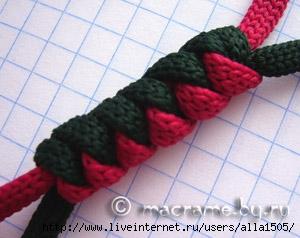 Плетется на...  Змея - одно из 12 животных китайского гороскопа.