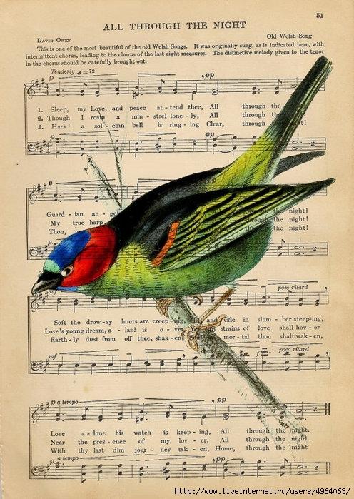 Открытка с нотами и птичками, днем рождения анимация