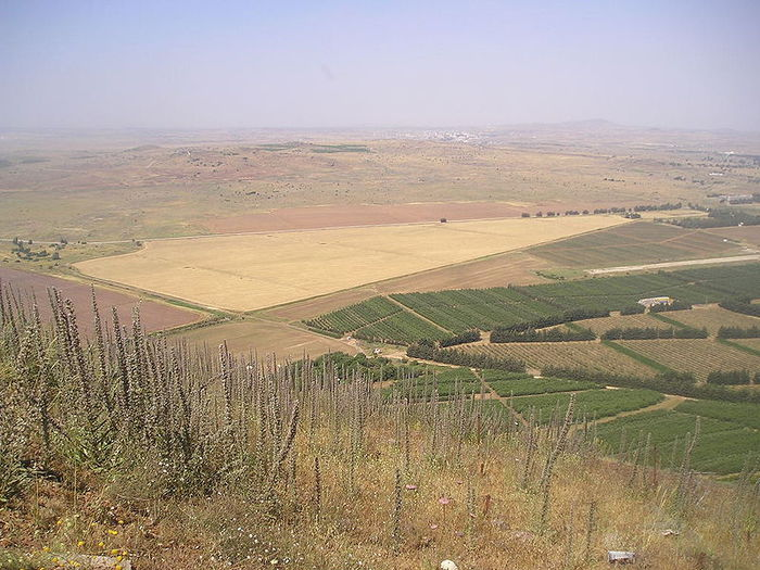 4638534_800pxView_from_Golan_Heights (700x525, 95Kb)