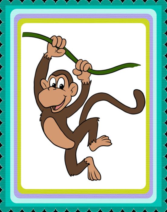Картинка для словарика обезьяна