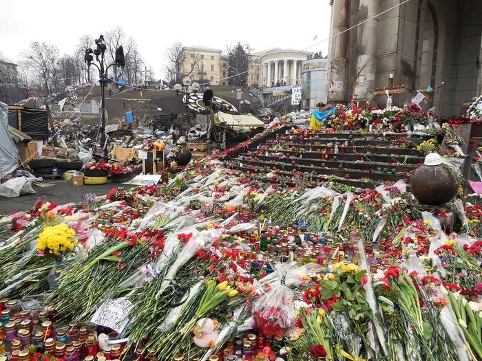 киев украина майдан цветы фотографии