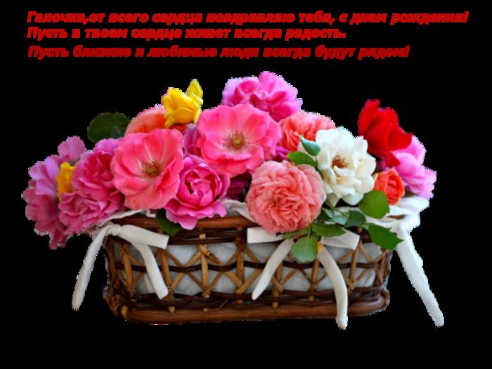 Открытки женщине с Днем Рождения Галина, Галя, Галюня, Галочка 60