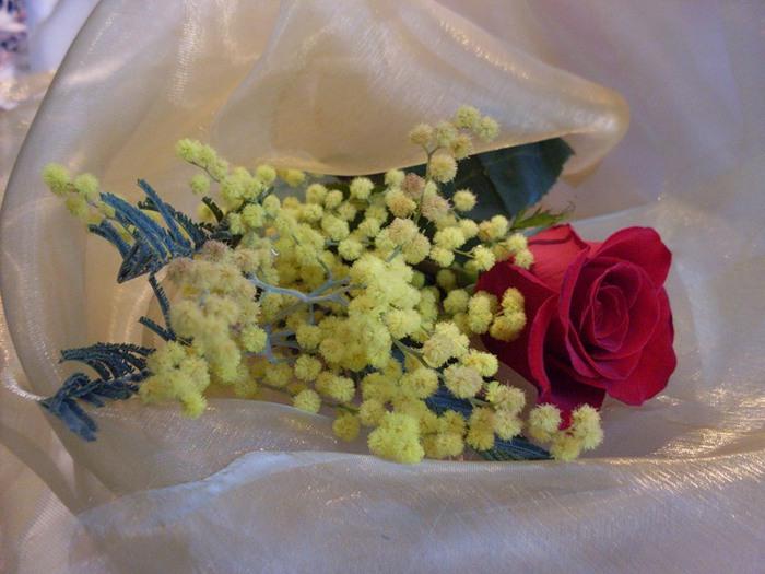 Плейкаст большие розы открытки свадьбы молодые