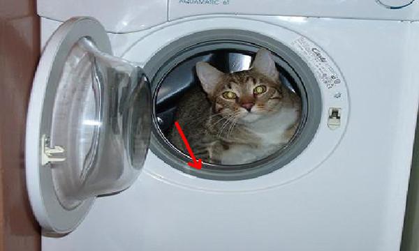 111358941 3937385  - Чем заклеить резину в стиральной машине