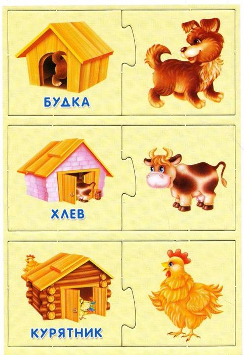 Картинки кто где живет домашние животные