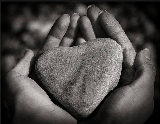 Сердце из камней 173