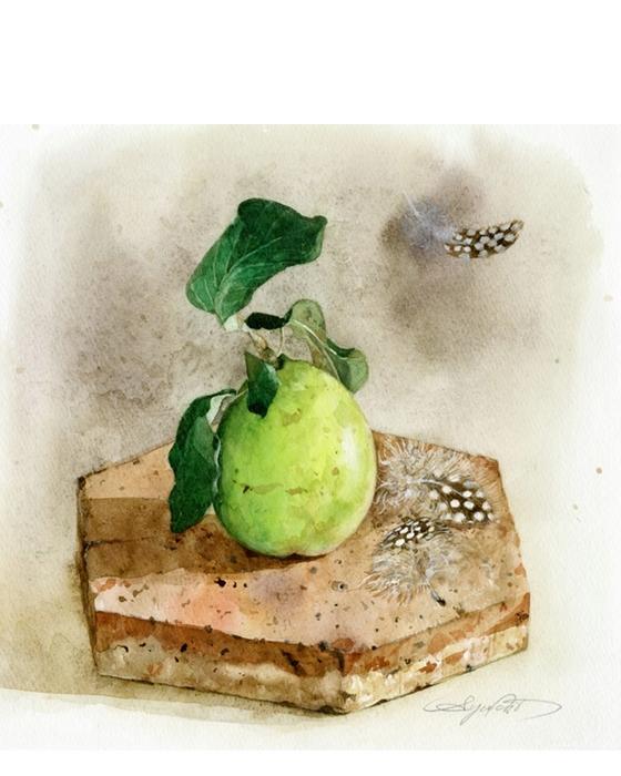 watercolor-art-052 (560x700, 228Kb)