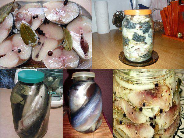Вкусные и простые рецепты рыбных закусок для повседневного и праздничного стола.