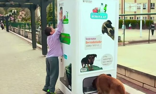 7359960-R3L8T8D-650-stray-dog-food-vending-machine-recycling-pugedon-4 (650x393, 77Kb)