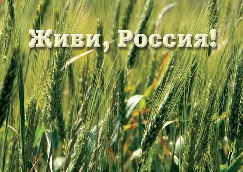 Картинки живи россия