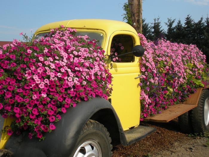 Доставка цветов на дачу