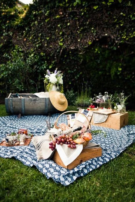 фото пикник в лесу