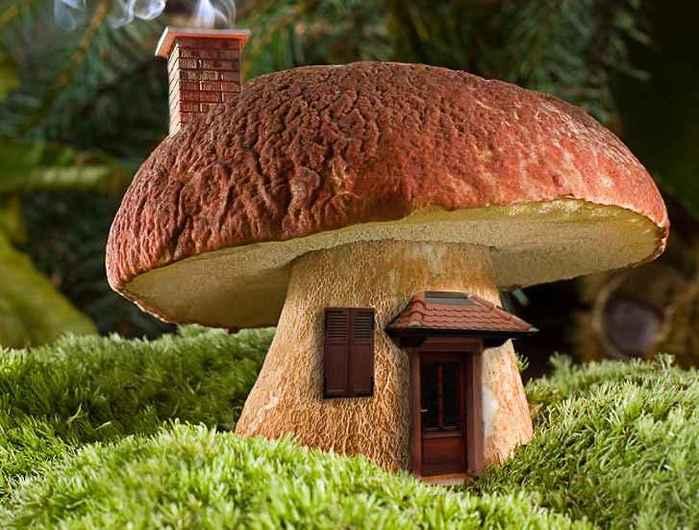 лишь самые большие грибы фотографии основных функциональных элементов
