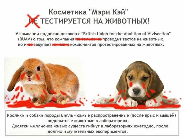 Тестируется ли косметика эйвон на животных косметика купить онлайн россия