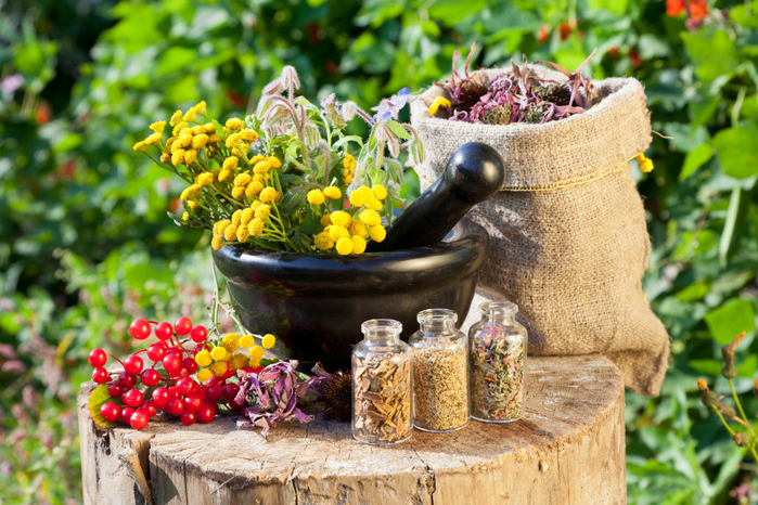 bigstock-Healing-Herbs-In-Mortar-And-In-45647386-1024x683 (700x466, 496Kb)