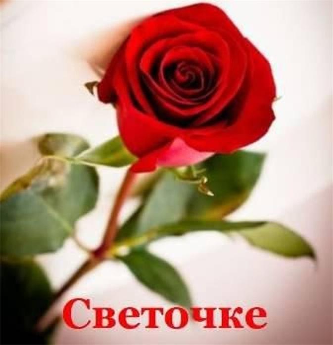 хорошо плодоносят открытка цветы для светланы вам кажется, что
