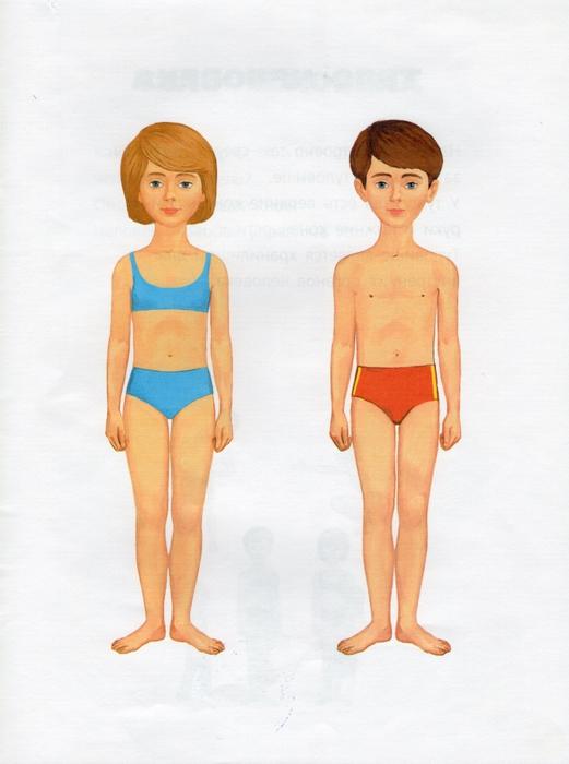 части тела человека для детей картинки