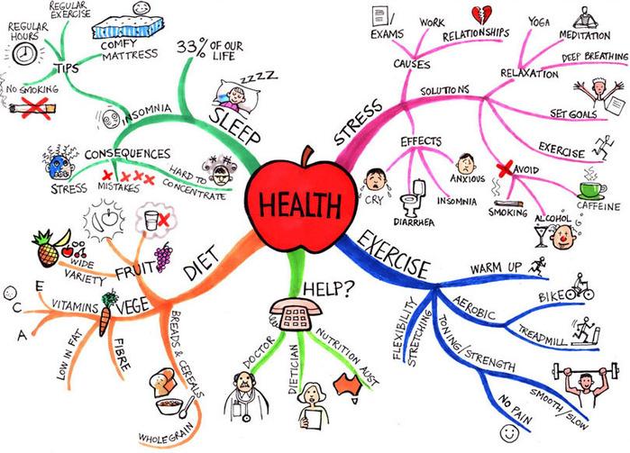 Holistic Health Coach >> Holistic Health Coach Herbal Medicine And Gaps Diet