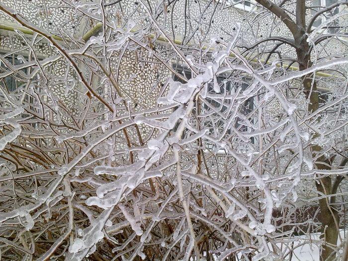 никакие демотиваторы ледяной дождь заверить копию