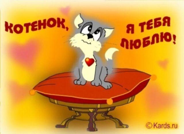 Спокойной, открытка котенок я тебя люблю