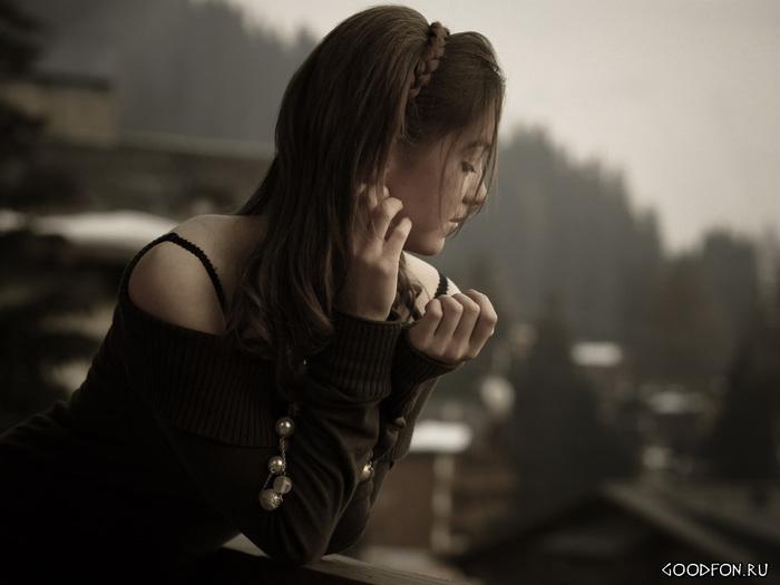 А пекинес (50 фото как выглядит гладкошерстный, черный и рыжий