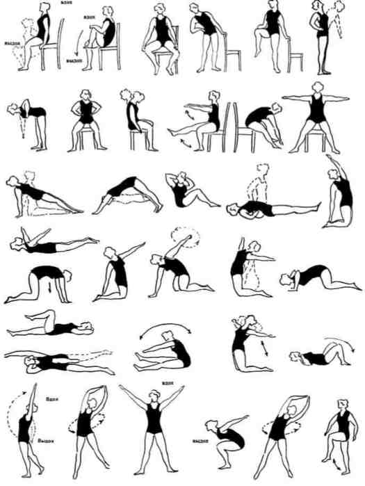 Курс лечебной гимнастики при остеохондрозе спины