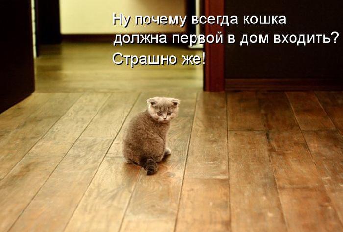 71311899_057.jpg
