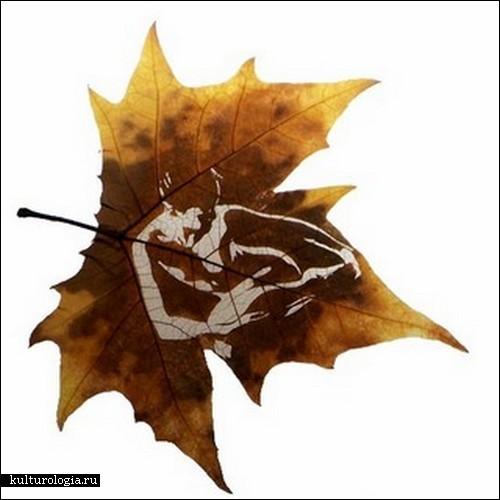 leaf-carving2 (500x500, 40Kb)