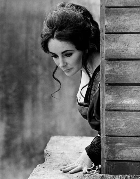 elizabeth_taylor_photo_25 (470x600, 41Kb)