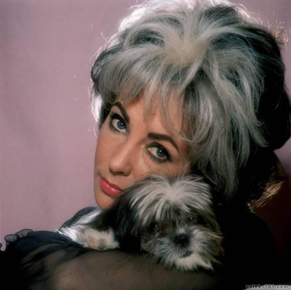 elizabeth_taylor_photo_47 (600x597, 36Kb)