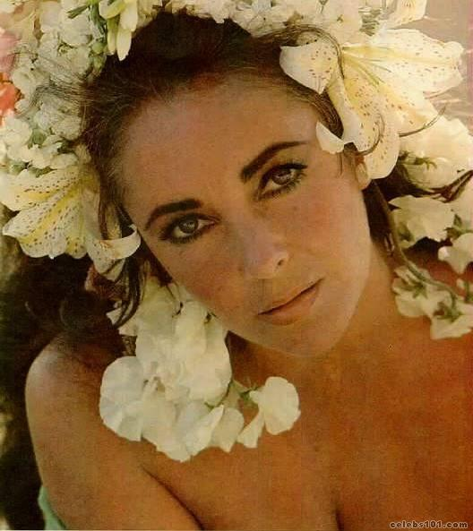 elizabeth_taylor_photo_87 (528x593, 45Kb)