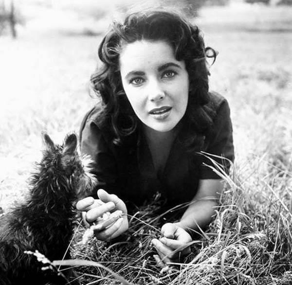 elizabeth_taylor_photo_90 (600x586, 55Kb)