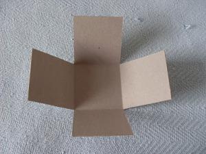 Шкатулка для рукодельницы/2719143_SDC19226 (300x225, 23Kb)