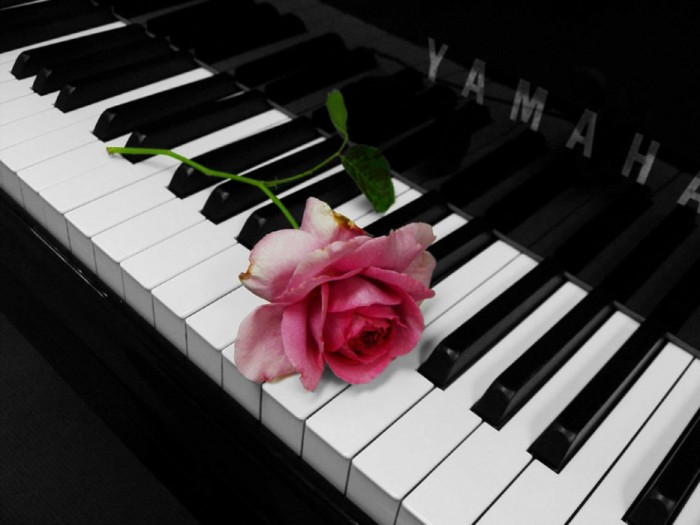 47345173_98355_piano_rose_by_snorkleb11 (700x525, 62Kb)
