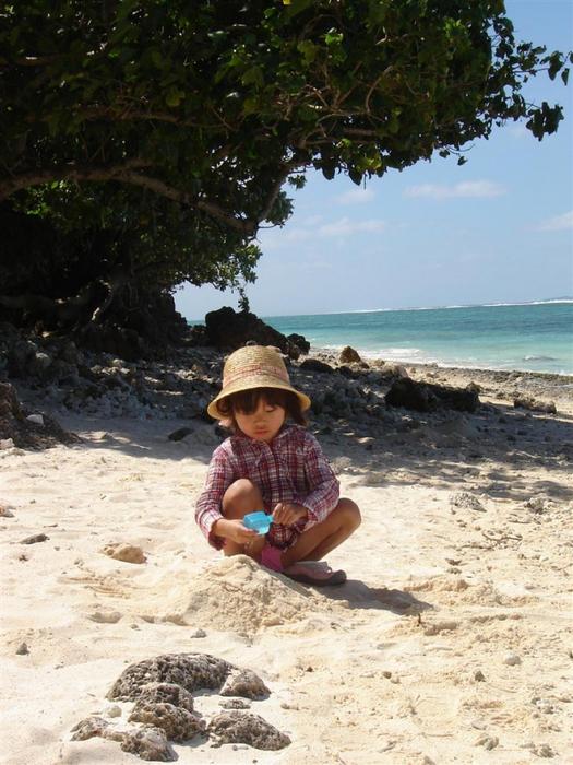 получить достаточном фото дикий пляж пары с детьми привлекает