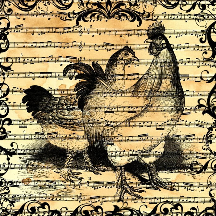 free digital scrapbook paper_sheet music chicken collage (700x700, 562Kb)