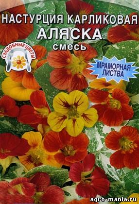 1430835961_nasturciya_alyaska (286x420, 57Kb)