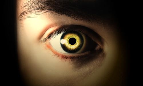 3518263_eyecolorchanged (500x304, 41Kb)