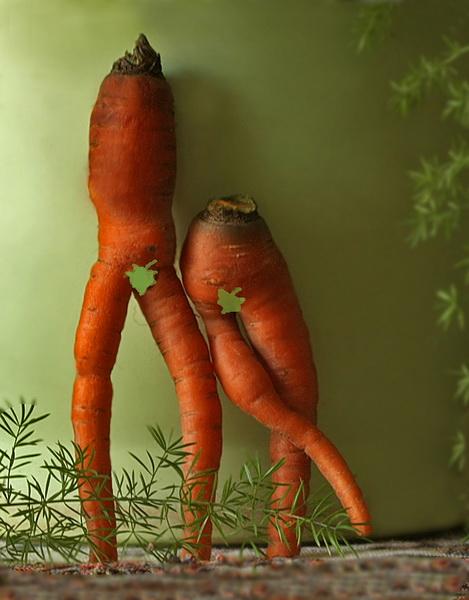 Картинки про морковь смешные, карандашом прикольные